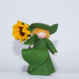 Zonnebloem, bloem in de hand