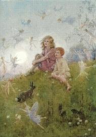 Geloof jij in feeën?, M.W. Tarrant
