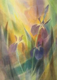 Iris, Liane Collot d'Herbois