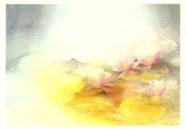 Waterlelies, Janet Jordan
