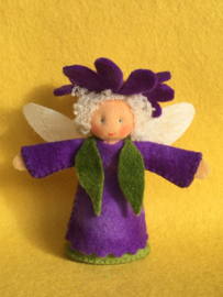Bloemenelfje paars