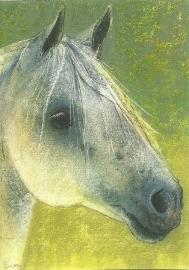 Paardenhoofd, Loes Botman