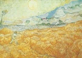 Tarweveld achter ziekenhuis St. Paul, Vincent van Gogh