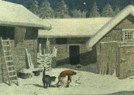 Tomte en de kat, Carl Wiberg