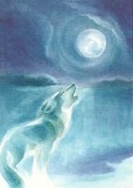 Wolf, Marie-Laure Viriot