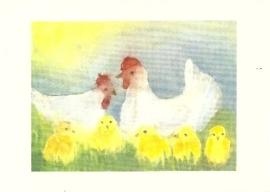 Kippen in de wei, Elke Bühler