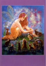 Fee en het fluwelen konijn, Judy Mastrangelo