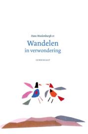 Wandelen in verwondering / Hans Moolenburgh Sr.