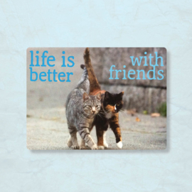 Magneet Life is better with friends