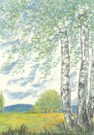 Voorjaar, Wolfgang Bach