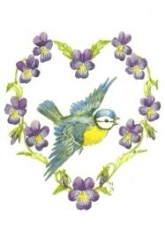 Pimpelmees en viooltjes, Molly Brett
