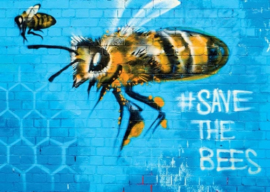 Save the bees, Graffiti