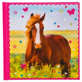 Poesiealbum Paard, Goldbuch Turnowsky