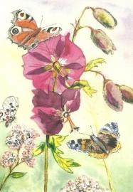 Malva en vlinders, Anne Wenzel