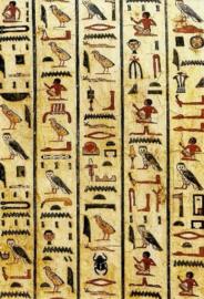 Mummiekist van Peftjaoeneith, Egyptisch