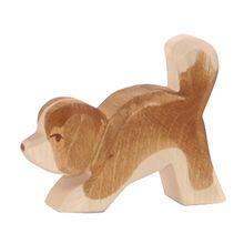 St. Bernard hond klein kop laag