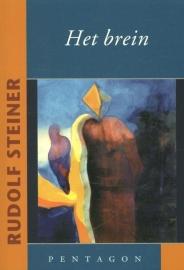 Het brein / Rudolf Steiner