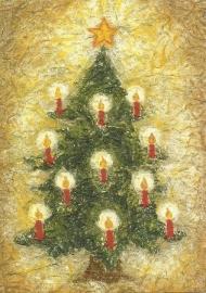 Denneboom, Heike Stinner