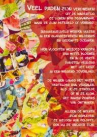Veel paden zijn verdwenen, Theo Zwinderman