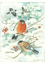 Vogels in de winter, Ingvar Björk