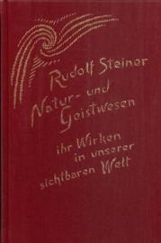 Natur- und Geistwesen – ihr Wirken in unserer sichtbaren Welt GA 98 / Rudolf Steiner
