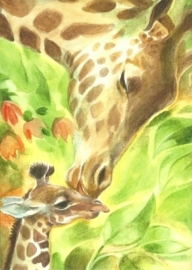 Giraffen, Marie-Laure Viriot
