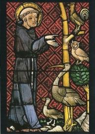 Vogelpreek van de heilige Franciscus, Königsfelden