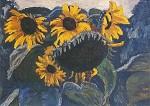 Zonnebloemen in de vrije natuur, Wolf-Dietmar Stock