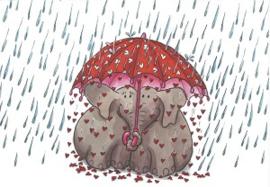 Vereend onder paraplu, Sophie Turrel