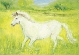 Het witte paardje, Marjan van Zeyl