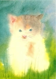 Klein katje, Dorothea Schmidt