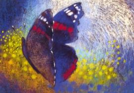 Vlinder, Loes Botman