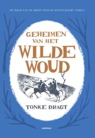 Geheimen van het wilde woud / Tonke Dragt