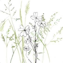 Klaver en gras, Maartje van den Noort MN04