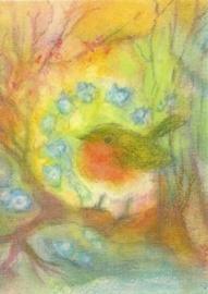 Voorjaarsdroom van roodborstje, Angela Koconda