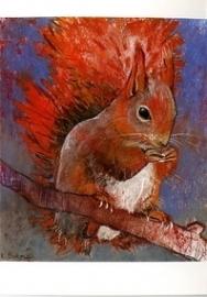 Eekhoorn, Loes Botman