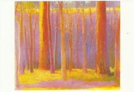 In het bosje van Mariposa, Wolf Kahn