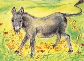 Tafeltje dekje, ezeltje strekje, Marjan van Zeyl