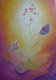 Vlinders bij bloem 11, Sonja Schoppers A4