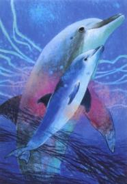 Dolfijn met jong, Loes Botman