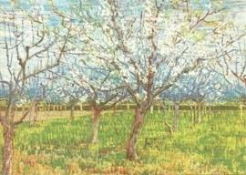 Bloeiende abrikozenbomen, Vincent van Gogh