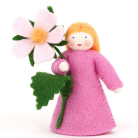 Roze roos met bloem in de hand