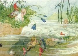 Vrolijke vissen, M. Minckwitz