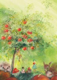 Appelboom, Cornelia Haendler