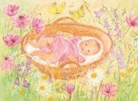 Baby in mandje tussen bloemen, Marjan van Zeyl