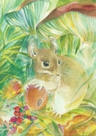 Veldmuis, Marie Laure Viriot