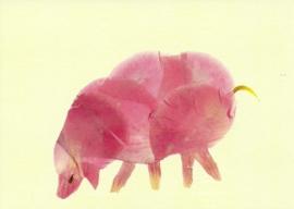 Varken van bloesemblaadjes, Annemarie Zafrana