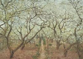 De boomgaard, Claude Monet