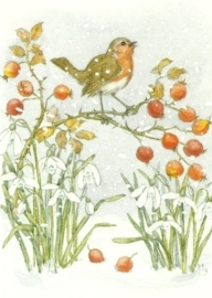 Roodborstje en rozenbottels, Molly Brett