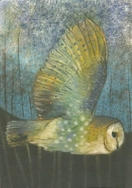 Vliegende kerkuil, Loes Botman